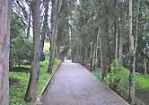 http://detispb.ru/images/foto/artek/6-.jpg